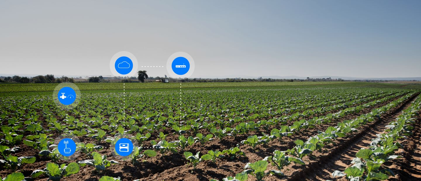 OPTIMIZE YOUR CROPS PRODUCTIVITY WITH NETBEAT™