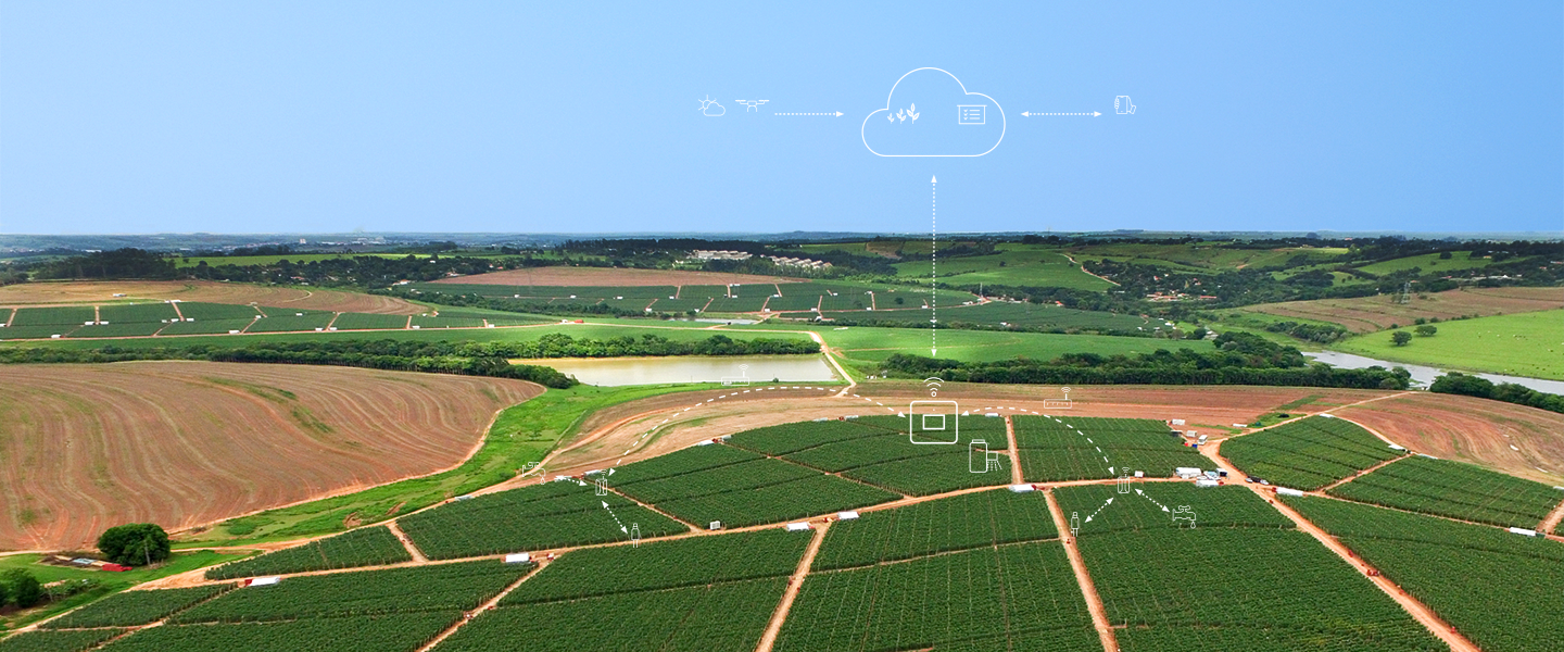 Digital farming solution